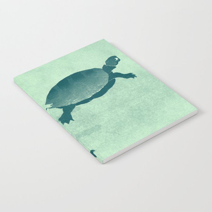Down with the turtles Notebook