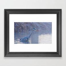Heron Fishing Framed Art Print