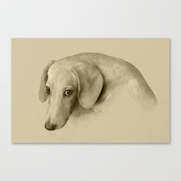 Devotee view of the dog Canvas Print