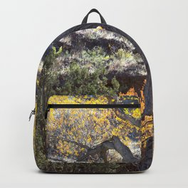 Fall In The Gila Wilderness Backpack