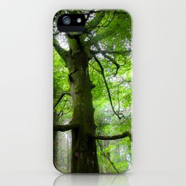 The Conductor Tree iPhone Case