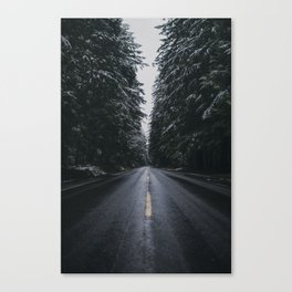 Where the Pines Extend  Canvas Print