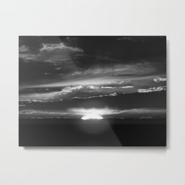 Black and White Delight Metal Print