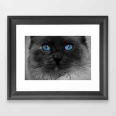 CATTURE Framed Art Print