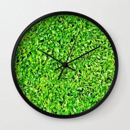Texture of grass Wall Clock