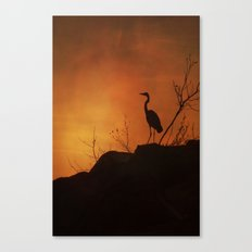 Night silhouette Canvas Print