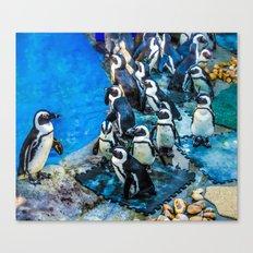 Penguin meeting Canvas Print