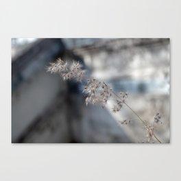 Temple Flower Canvas Print