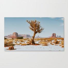 Monument Valley Juniper Canvas Print
