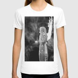 # 285 T-shirt