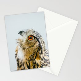 Eurasian Eagle Owl Stationery Cards
