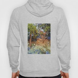 Sunset on the Rocks - Tahoe Hoody