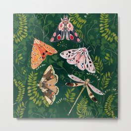 Moths and dragonfly Metal Print