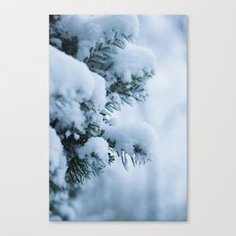 Winter Branches 1 Canvas Print
