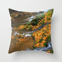Meeting of the Creeks Throw Pillow