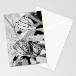Physalis angulata Stationery Cards