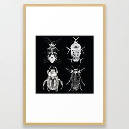 Wild Wild Bugs Framed Art Print
