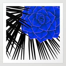 Big Bold Indigo Echeveria Illustration Art Print