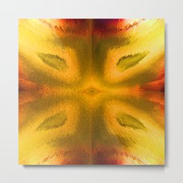 Agate in high contrast Metal Print