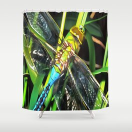 Blue Dragonfly Wings Shower Curtain