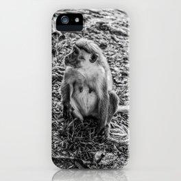 Toque Macaque Monkey iPhone Case