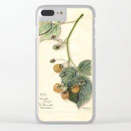 Raspberries - Brinkles Orange Clear iPhone Case