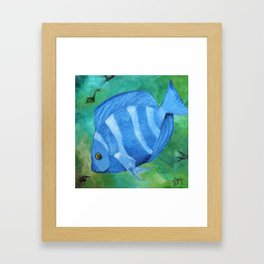 Tropical Fish - Blue Tang  Framed Art Print