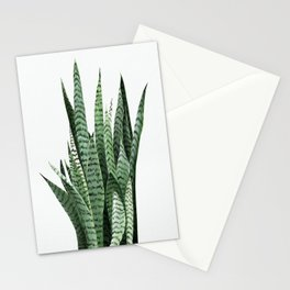 Snake Plant (Sansevieria laurentii) Art Print. Botanical Wall Art. Original acrylic painting by Anne Stationery Cards