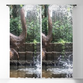 Elephant Bathing Blackout Curtain