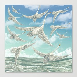 Sea Swans Canvas Print