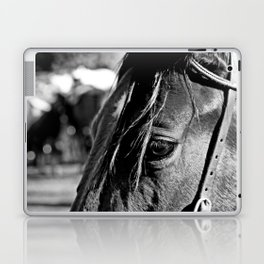 Horse-1-B&W Laptop & iPad Skin