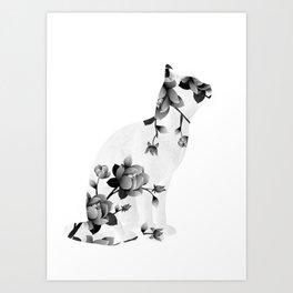 Cat 22 Art Print