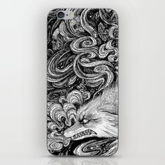 Swamp witch iPhone & iPod Skin