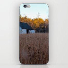 Field of gold iPhone Skin