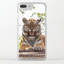 SIBERIAN TIGER Clear iPhone Case