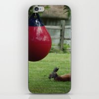 boxing iPhone & iPod Skins featuring Boxing 101 by Starr Cuevas Photography