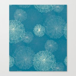 Spider Chrysanthemums Canvas Print