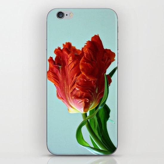 American Tulip iPhone & iPod Skin