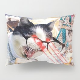 Laser Cat Librarian In Space Pillow Sham