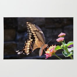 Swallowtail Overexposed Rug