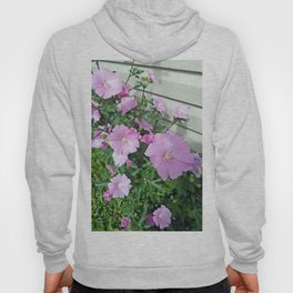 Pink Musk Mallow Bush in Bloom Hoody