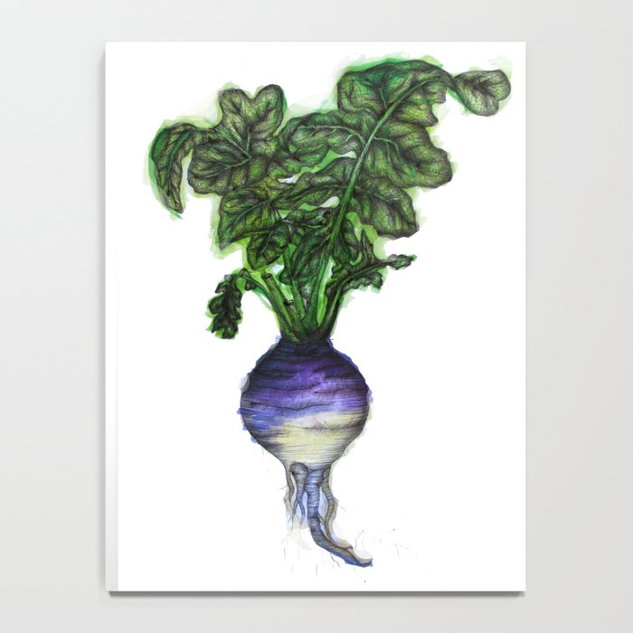 Rooted: The Rutabaga Notebook