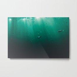 Little Fish Metal Print