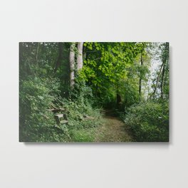 Relaxing in the Woods // Ohio Metal Print