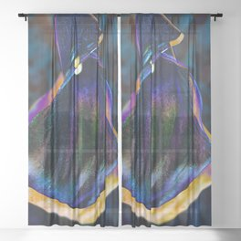 Lantern Sheer Curtain
