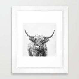 Highland Bull Framed Art Print