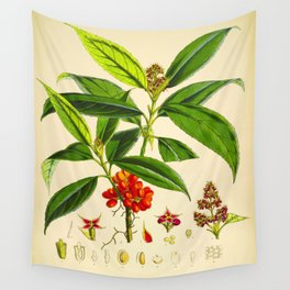 Vintage Scientific Botanical Illustration Species Drawing Himalayan Plants Green Leaves Red Berries Wall Tapestry