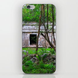 Into the Forest iPhone Skin