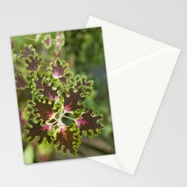 Coleus Inky Fingers Stationery Cards