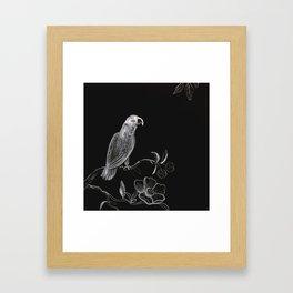 White Parrot Framed Art Print